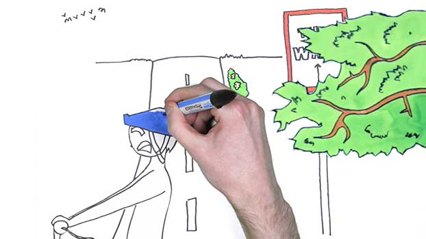 bacp drawing animation whiteboard animation video